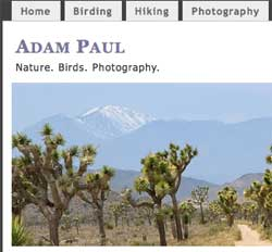 Adam Paul's blog screen grab