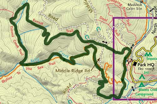 Latest hike Timms Creek Trail at Big Basin Redwoods State Park